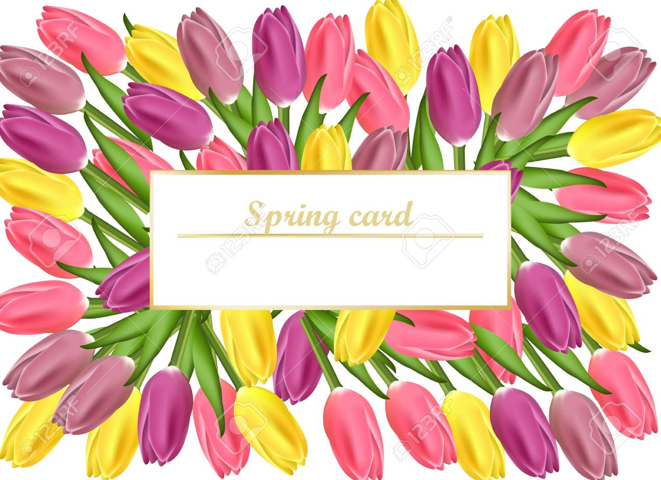 Tulips Card Realistic Flowers Illustrations For Women Day Wedding