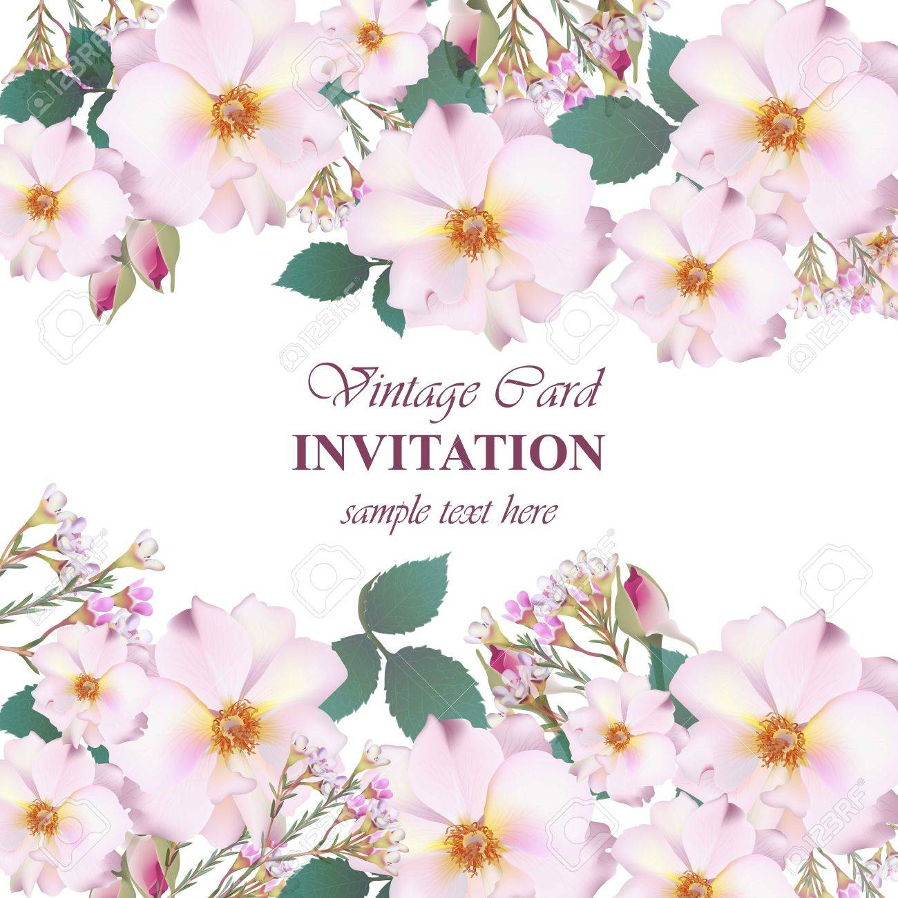 Wedding invitation card vector delicate rose and lavender flowers vector wedding invitation card vector delicate rose and lavender flowers primrose pink colors stopboris Choice Image