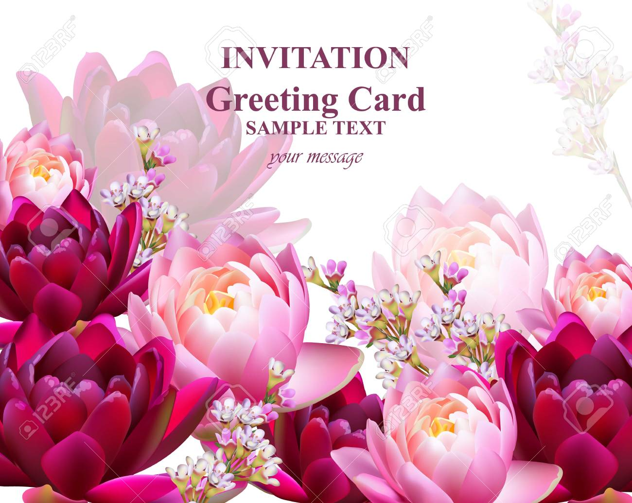Invitation Or Greeting Card With Water Lily Flowers Vector