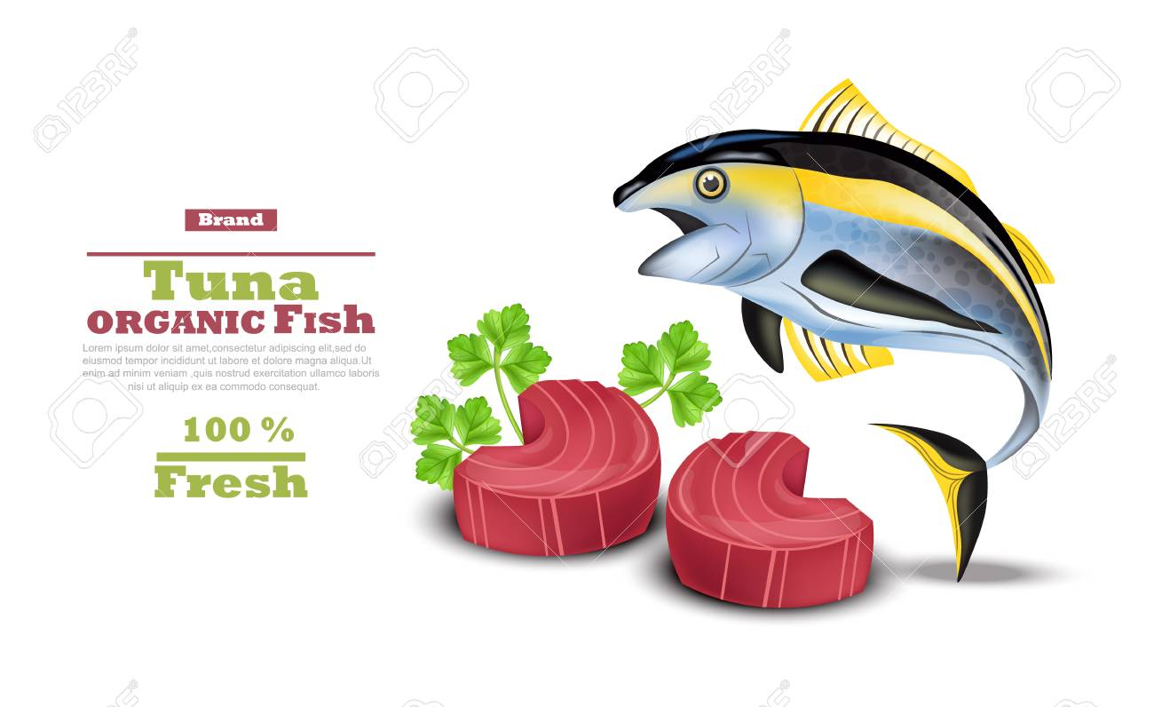 fresh tuna fish vector organic tuna steak meat illustration royalty free cliparts vectors and stock illustration image 97296205 fresh tuna fish vector organic tuna steak meat illustration