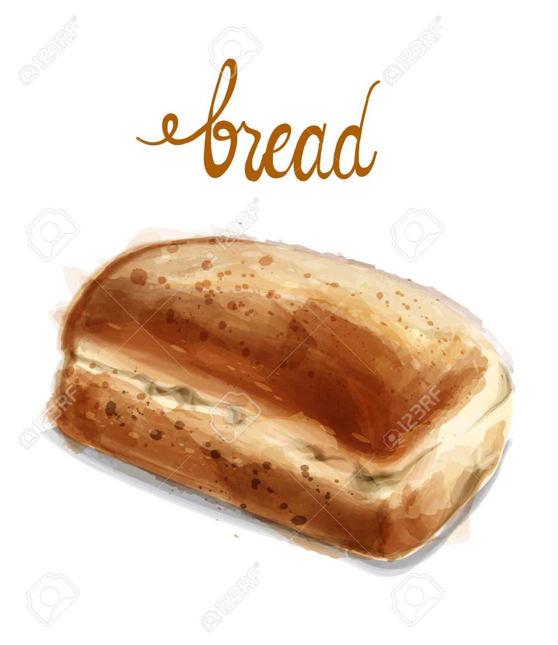 Watercolor Bread Vector Illustration Vintage Homemade Fresh Royalty Free Cliparts Vectors And Stock Illustration Image 123654137