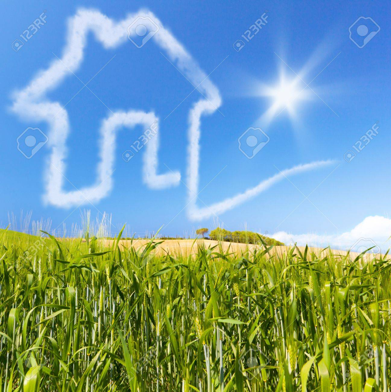 Concept for real estate for sale or buy  Cloud house home on a green cornfield  Concept about financing a credit for pay a housebuilding Stock Photo - 21085942
