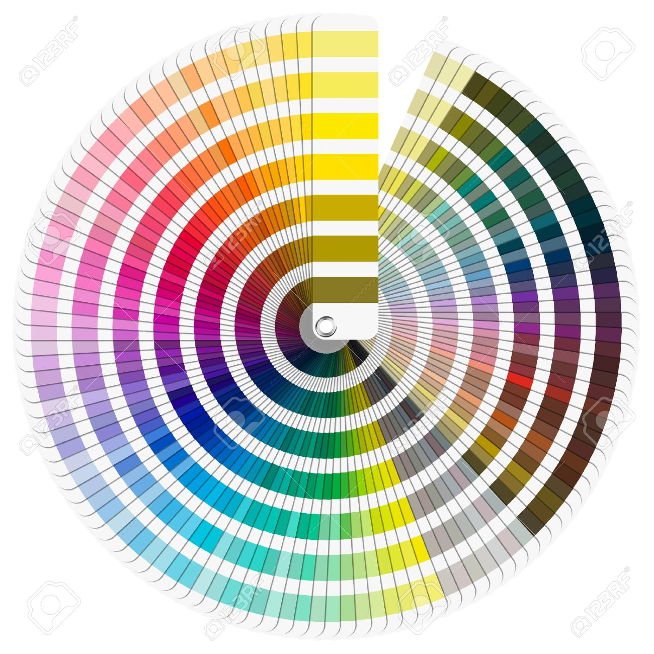 Pantone Color Swatch Color Swatch Pantone Color