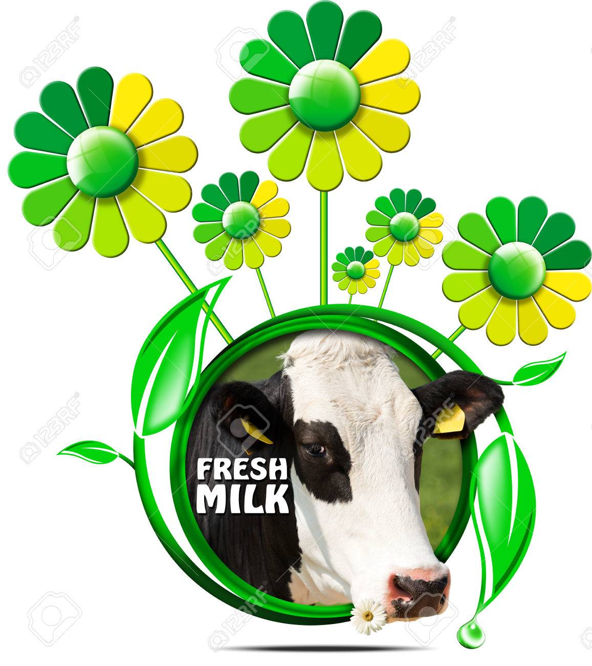 Round symbol with a head of cow and text fresh milk green and round symbol with a head of cow and text fresh milk green and yellow flowers buycottarizona