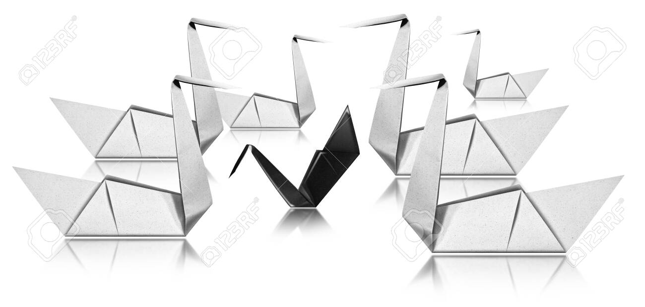 Bullying concept, six white paper swans face a black swan, Origami isolated on white background - 135655877