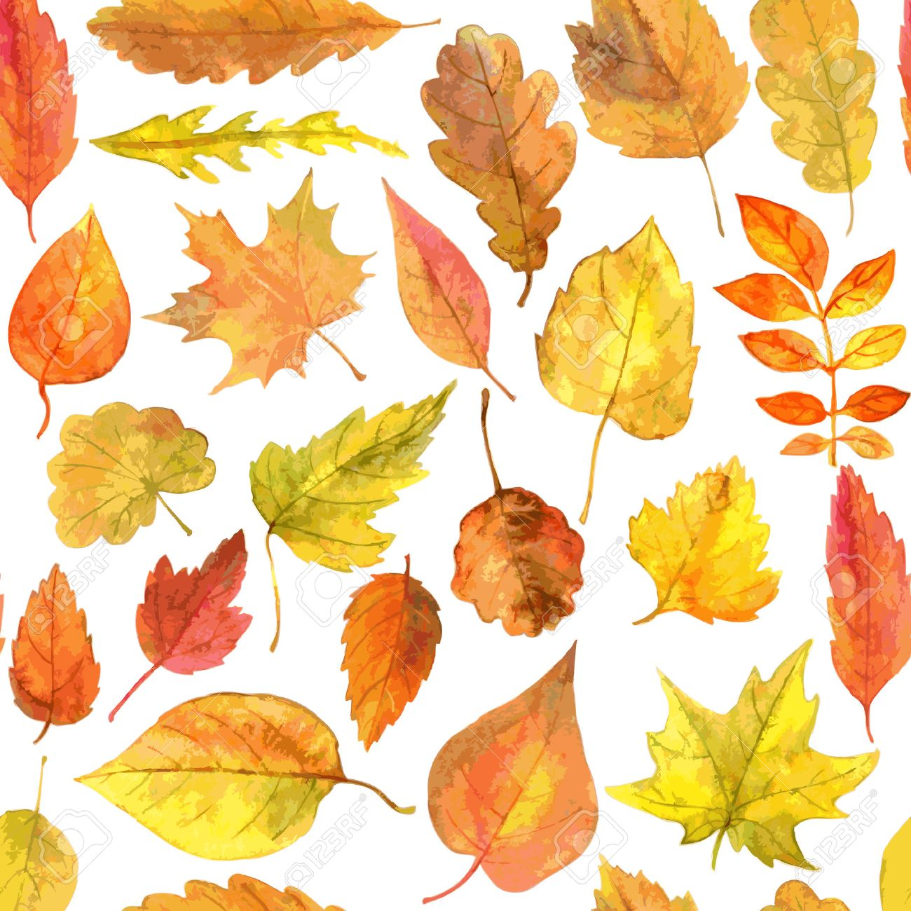 vector seamless pattern with autumn leaves drawing by watercolor, hand drawn vector elements - 38899414
