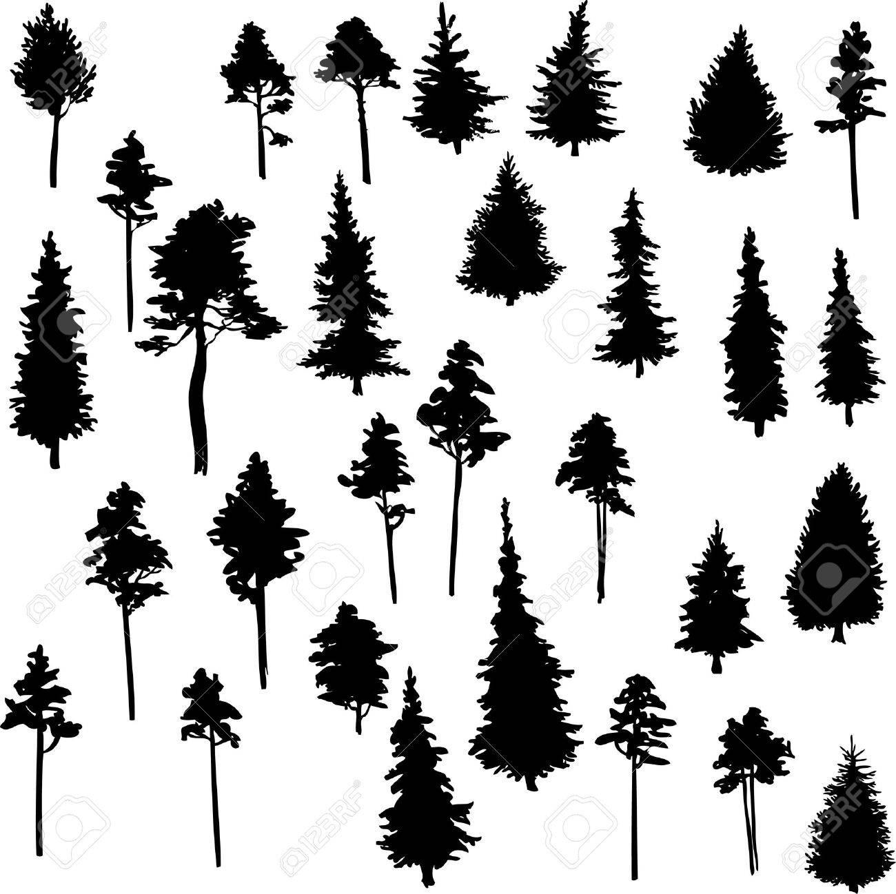 set of set of conifer trees vector illustration royalty free rh 123rf com vector trees in plan vector trees illustrator