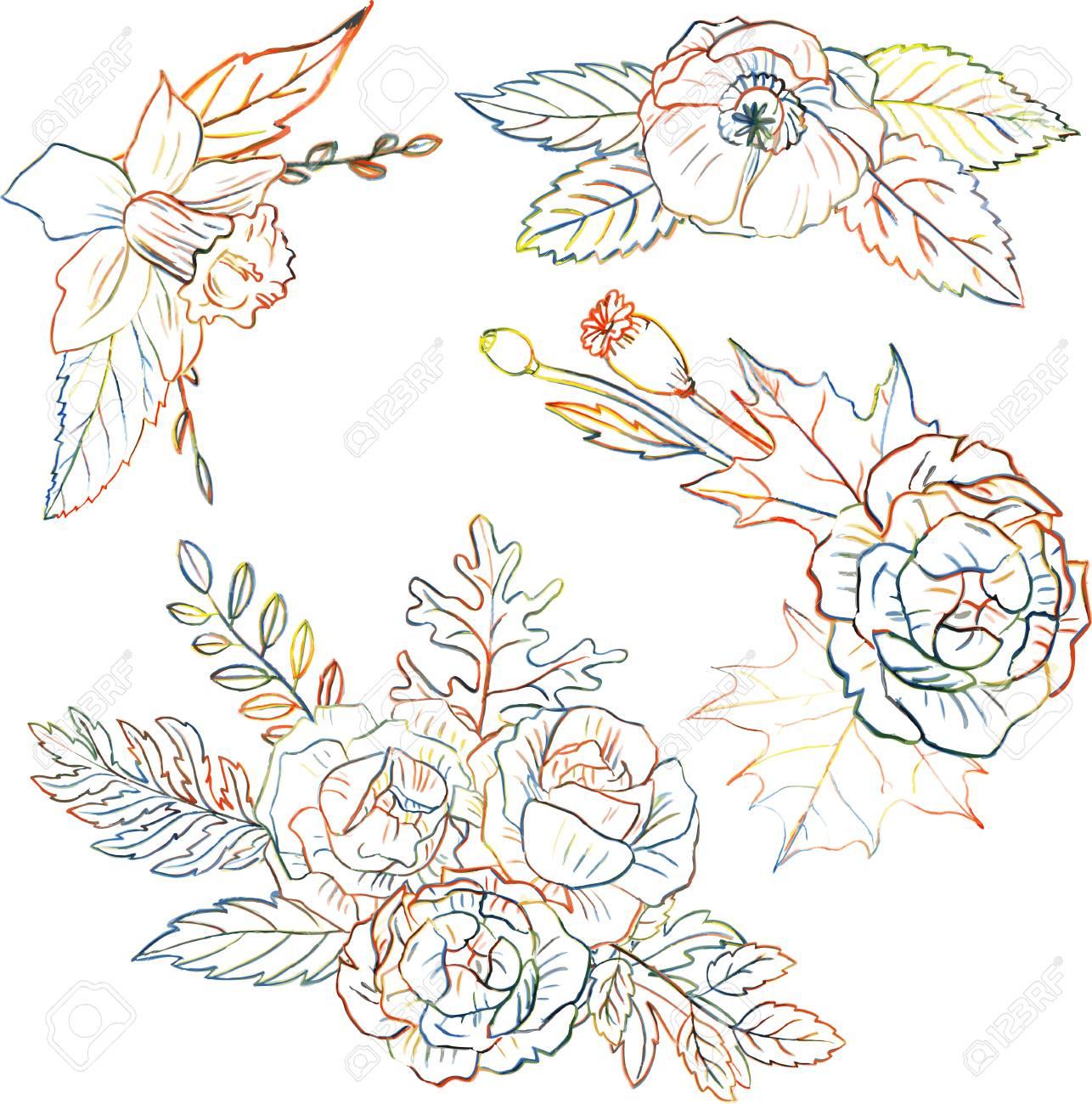 Dessin Floral Ensemble Dessin De Crayons De Couleur Avec Des Fleurs