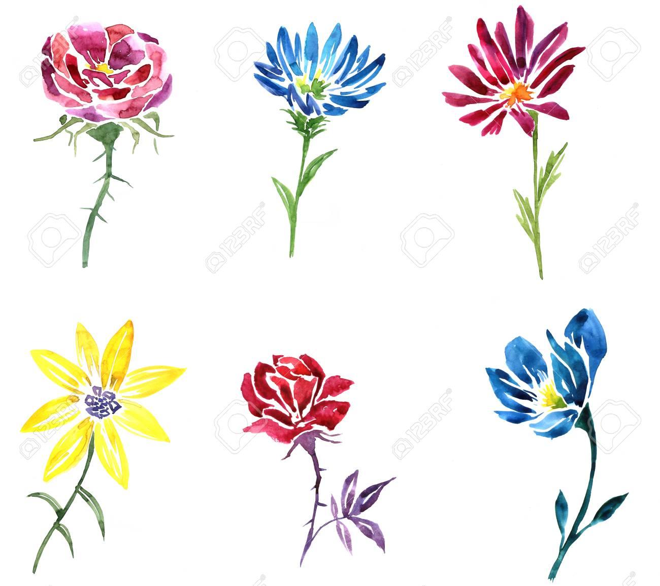 Dessin Fleurs Aquarelle Ensemble D Elements Floraux Isoles