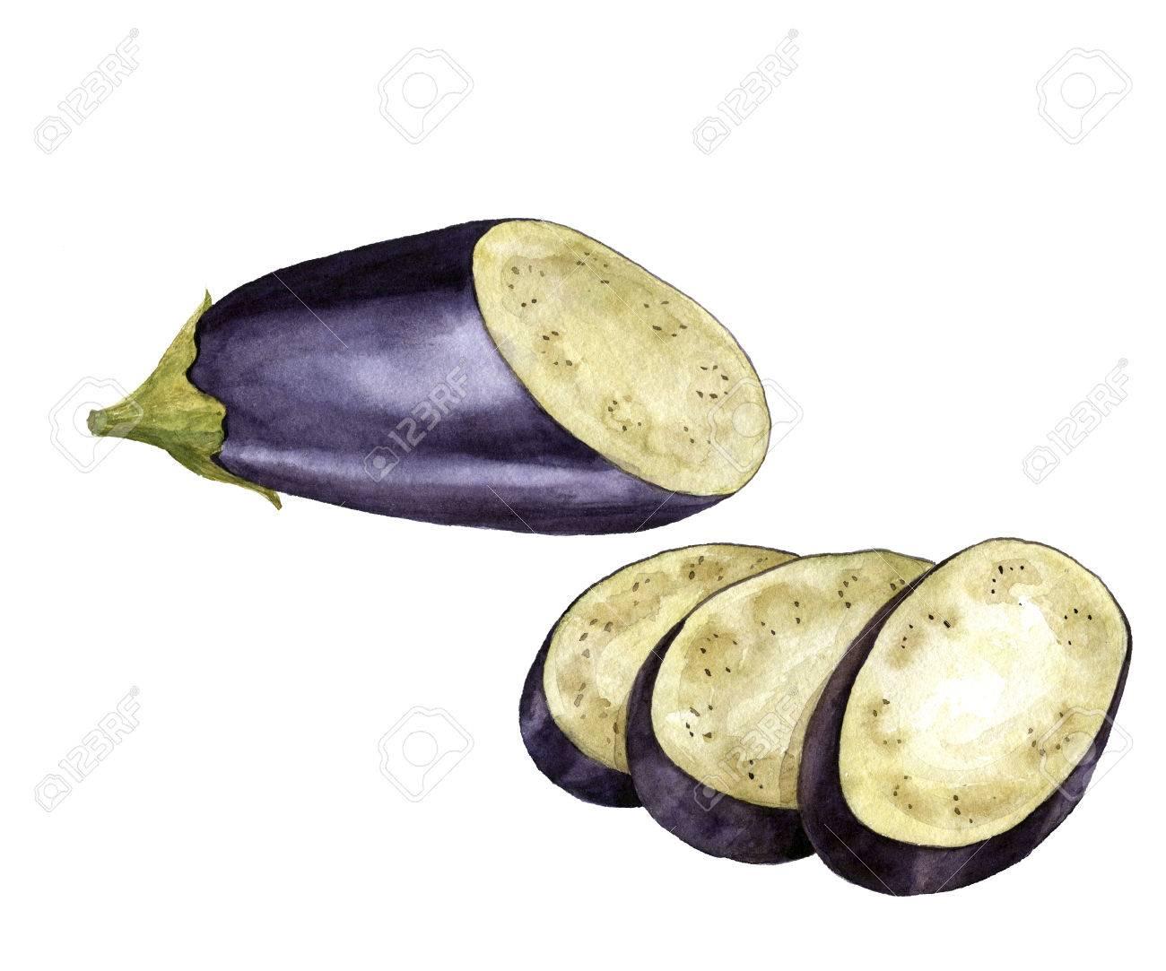 Aubergine Dessin aquarelle la moitié et les tranches d'aubergine dessin, isolé au
