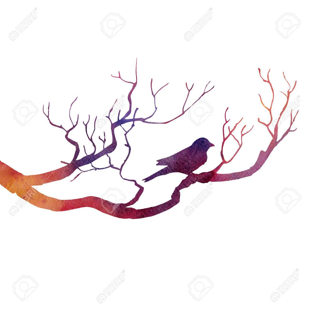 Silhouette D Oiseau Au Dessin De L Arbre Par L Aquarelle La Main