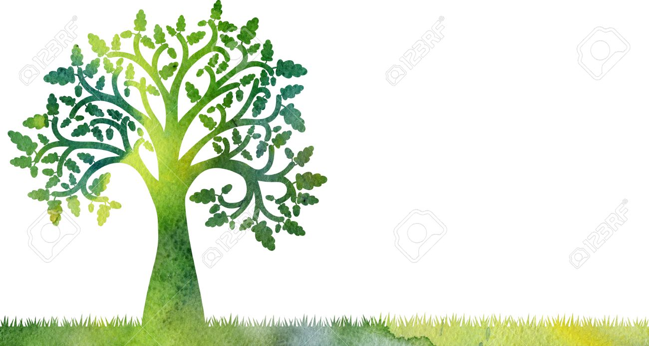 silhouette of oak tree with leaves and acorns at grass drawing in watercolor, artistic hand painting illustration - 56865523
