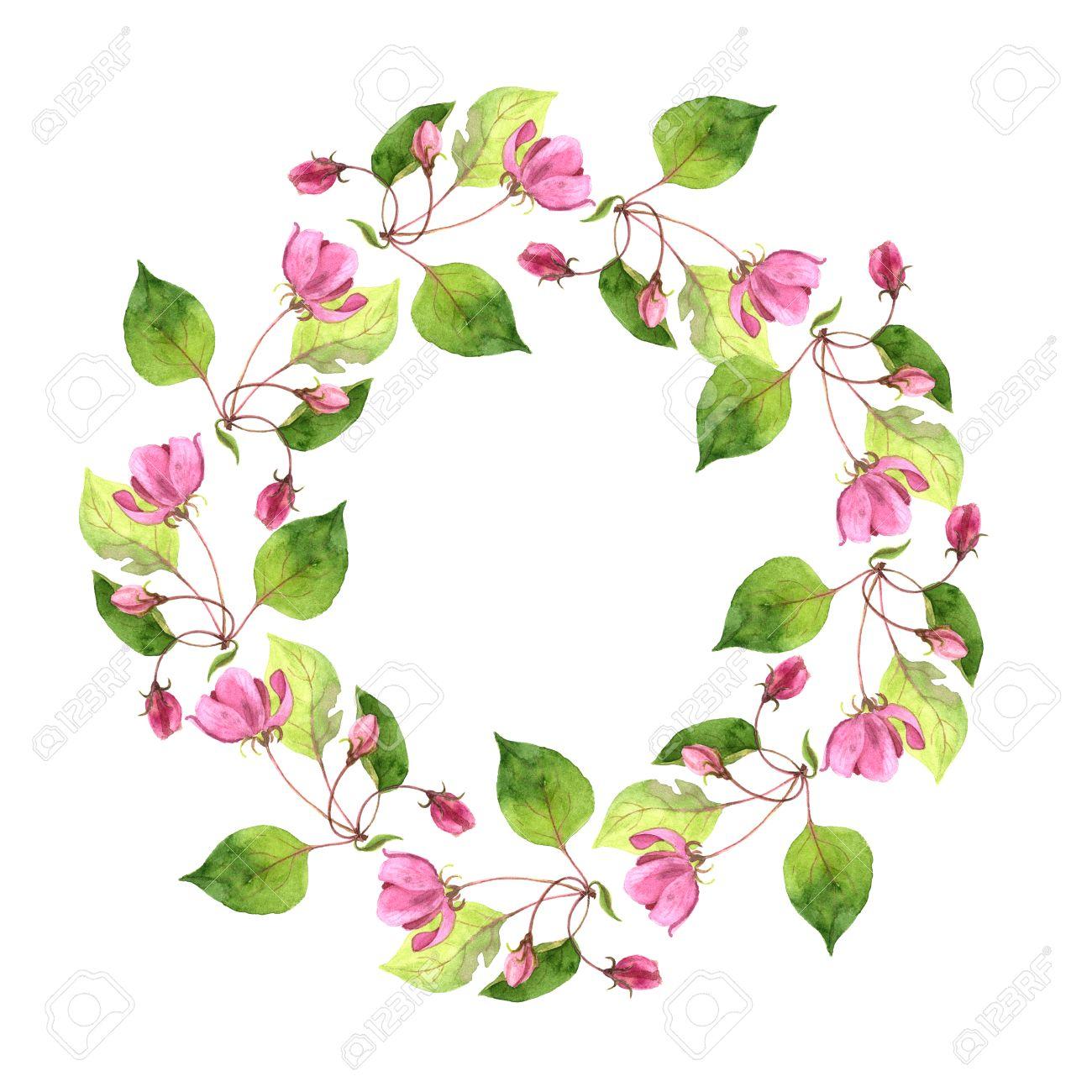 Marco Floral Redondo Con Las Flores Del árbol De La Acuarela Manzana ...