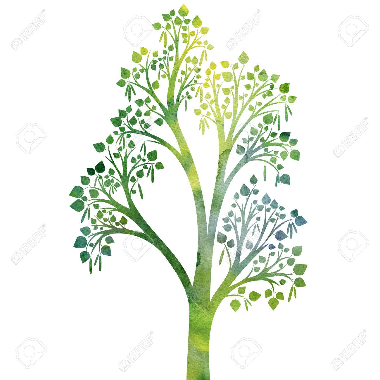 Silhouette Of Birch Tree With Leaves Drawing In Watercolor ... for Tree Drawing With Watercolor  300lyp