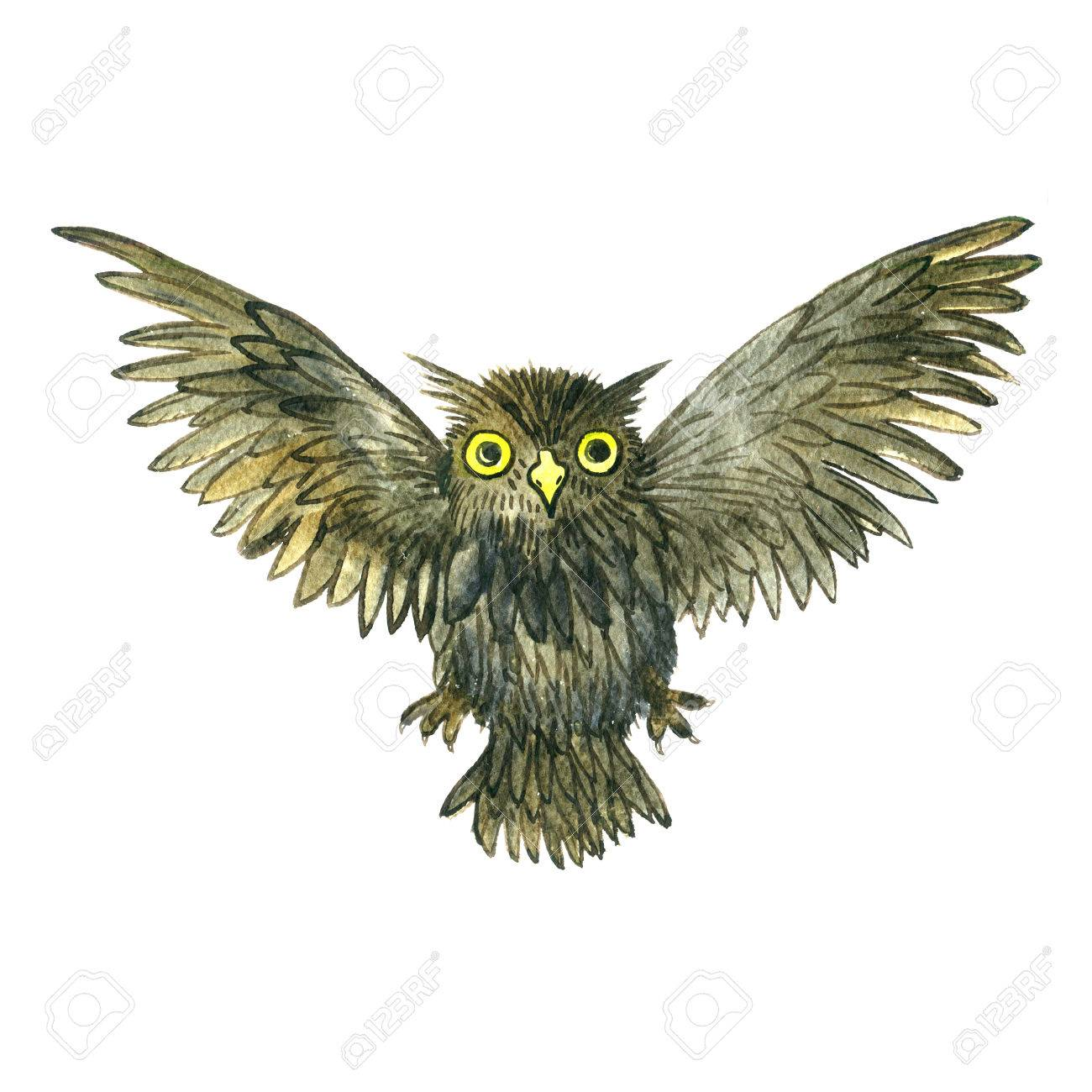 watercolor cartoon flying doodle owl drawing bird isolated at white background hand drawn illustrtion