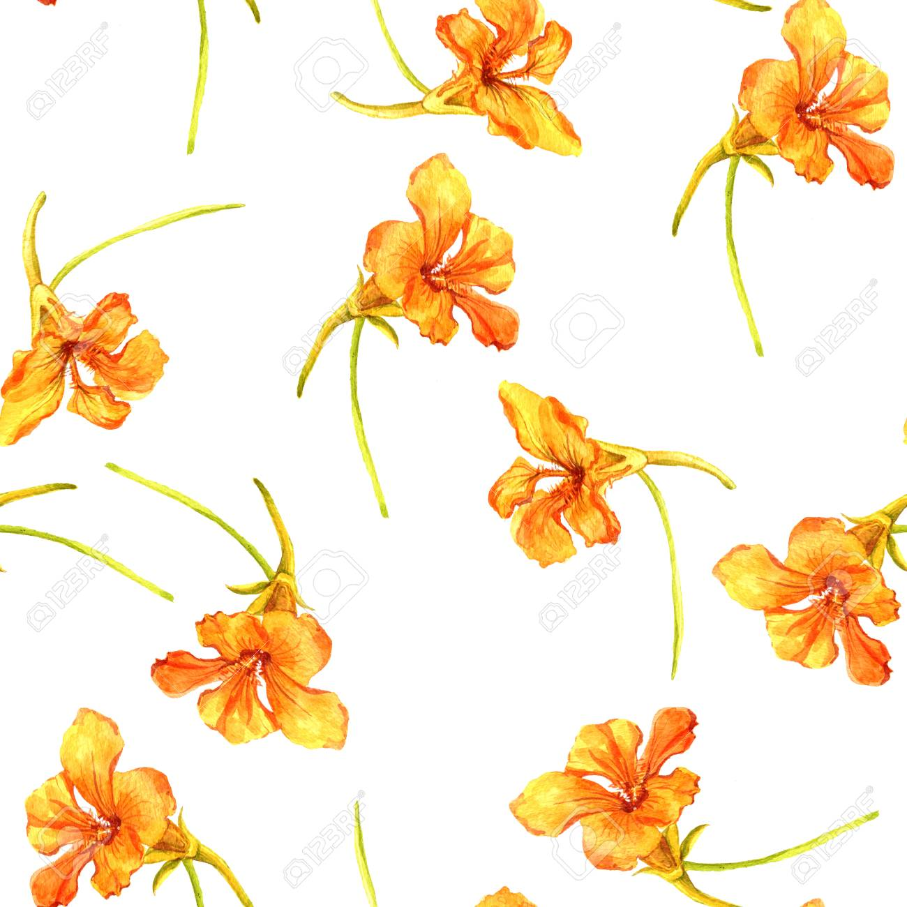 Seamless Pattern With Watercolor Drawing Orange Flowers Background
