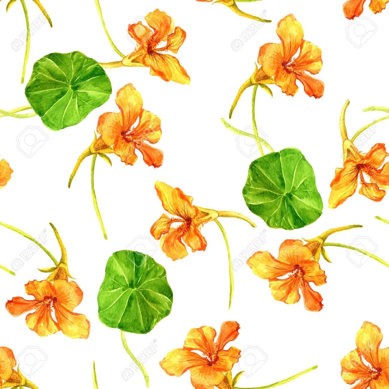 Patrón Sin Fisuras Con Flores De Color Naranja Dibujo De La Acuarela