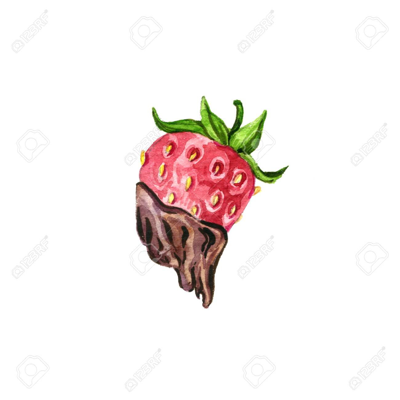 Strawberry With Chocolate Drawing In Watercolor Isolated At White Stock Photo Picture And Royalty Free Image Image 65755941