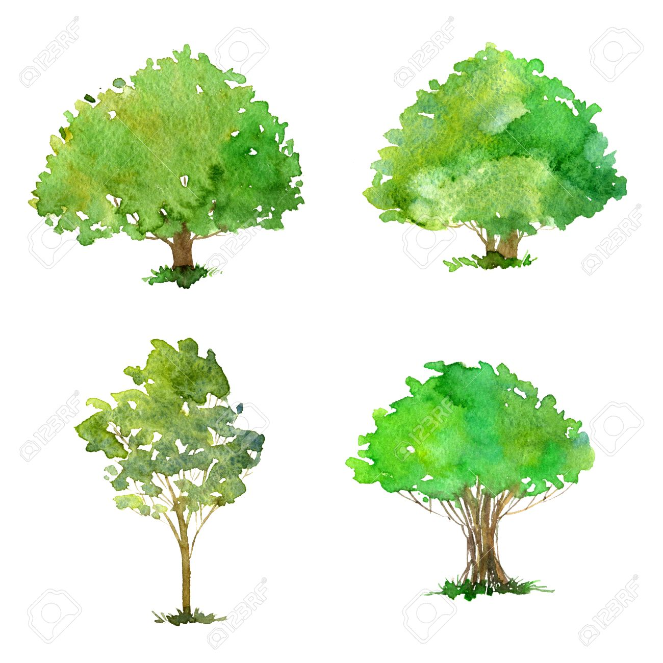 Set Of Trees Drawing By Watercolor, Bushes And Decidious, Green ... for Tree Drawing With Watercolor  300lyp