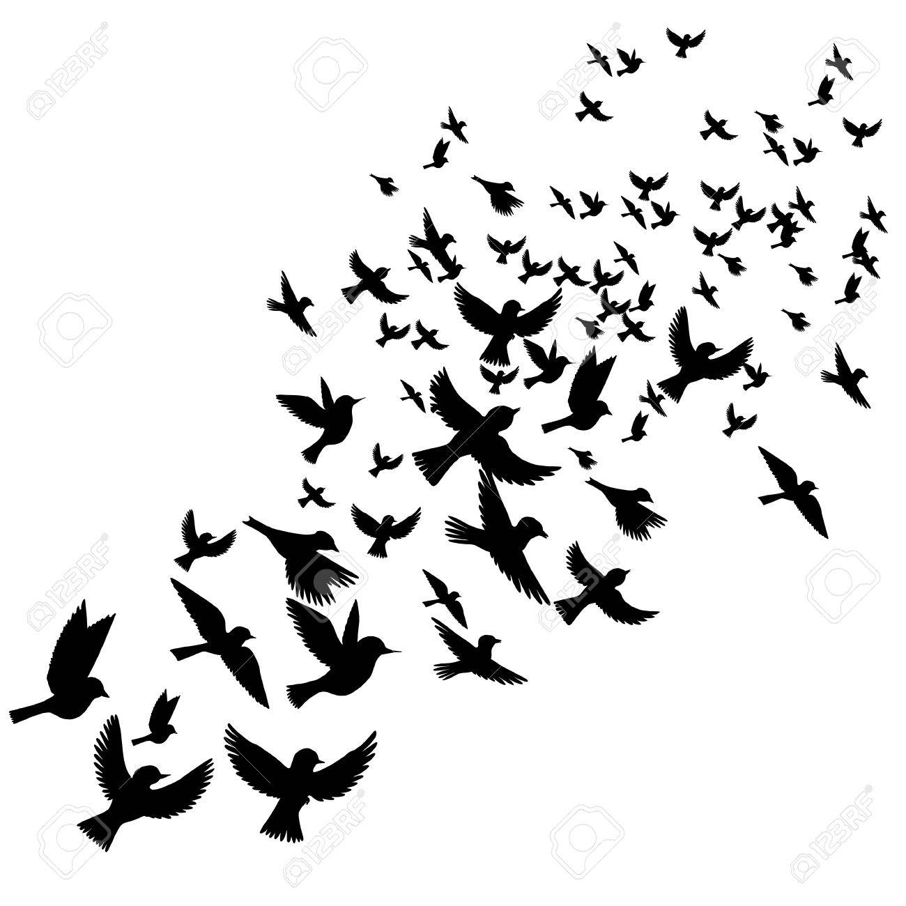 bird flock vector flying birds silhouettes hand drawn songbirds rh 123rf com bird flock silhouette vector flying bird silhouette vector free