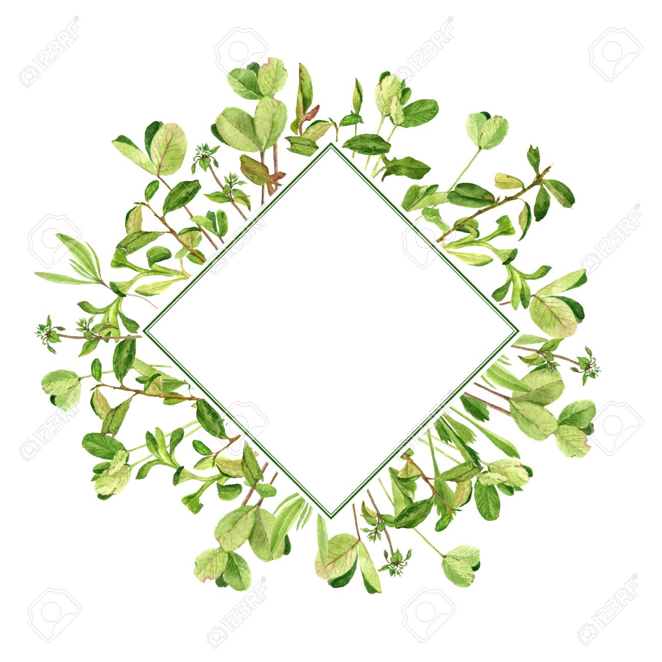 template with drawing clover leaves stock photo picture and royalty