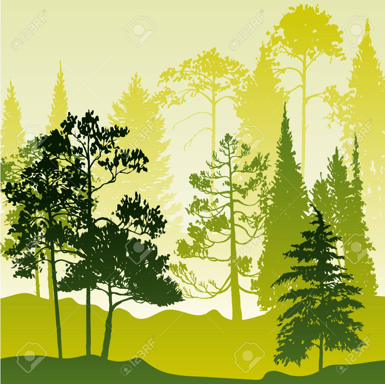 vector landscape with pine and fir trees abstract nature background