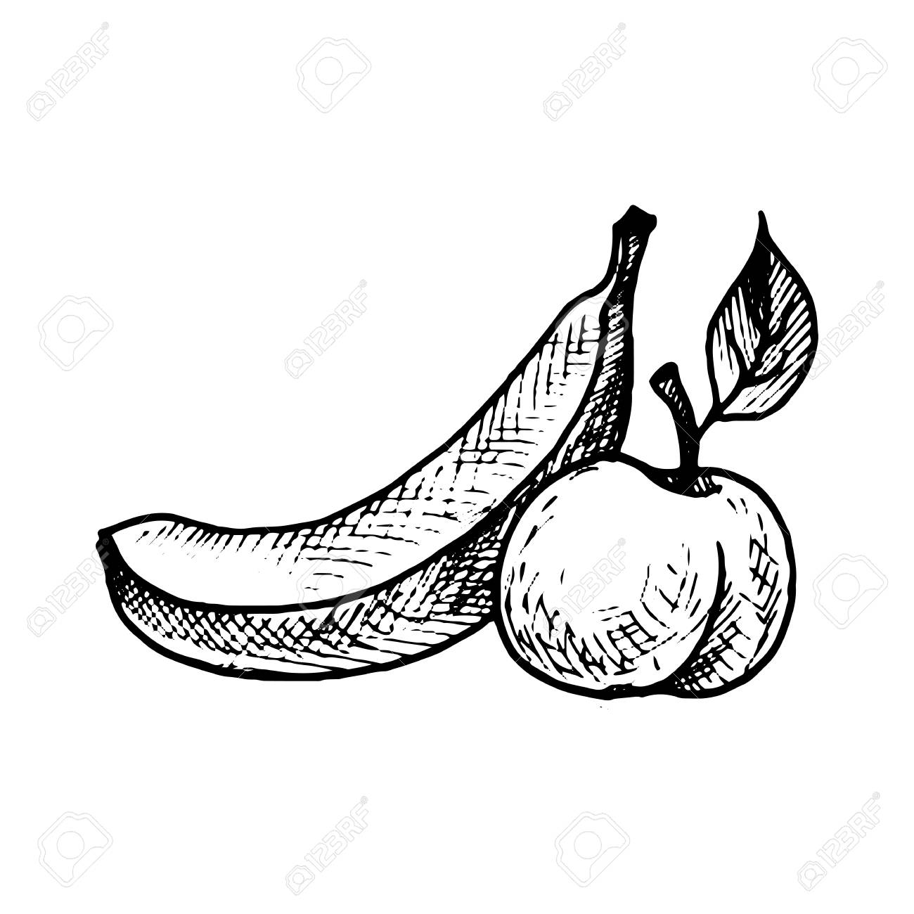 Vector Ink Drawing Banana And Peach Stock Photo Picture Royalty