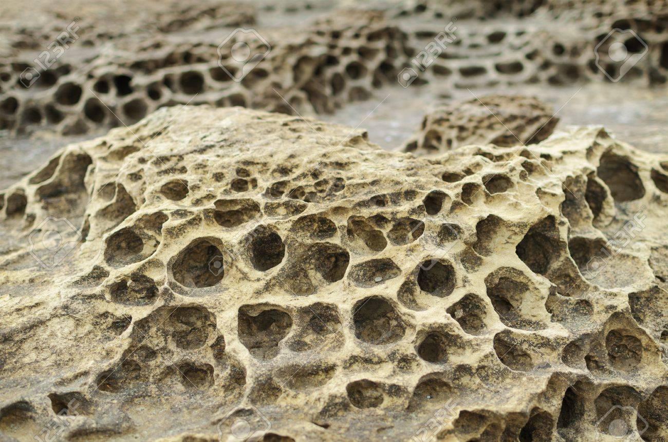 Closeup rock erosion holes sea wall. - 77007003