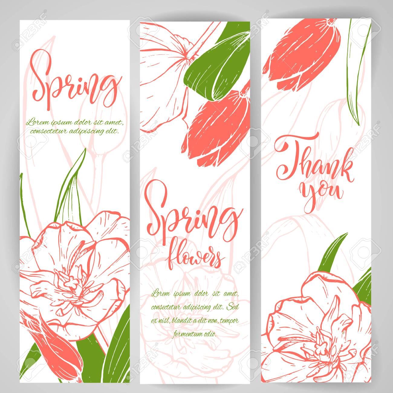 Sketch linear tulip blossom. - 128391025