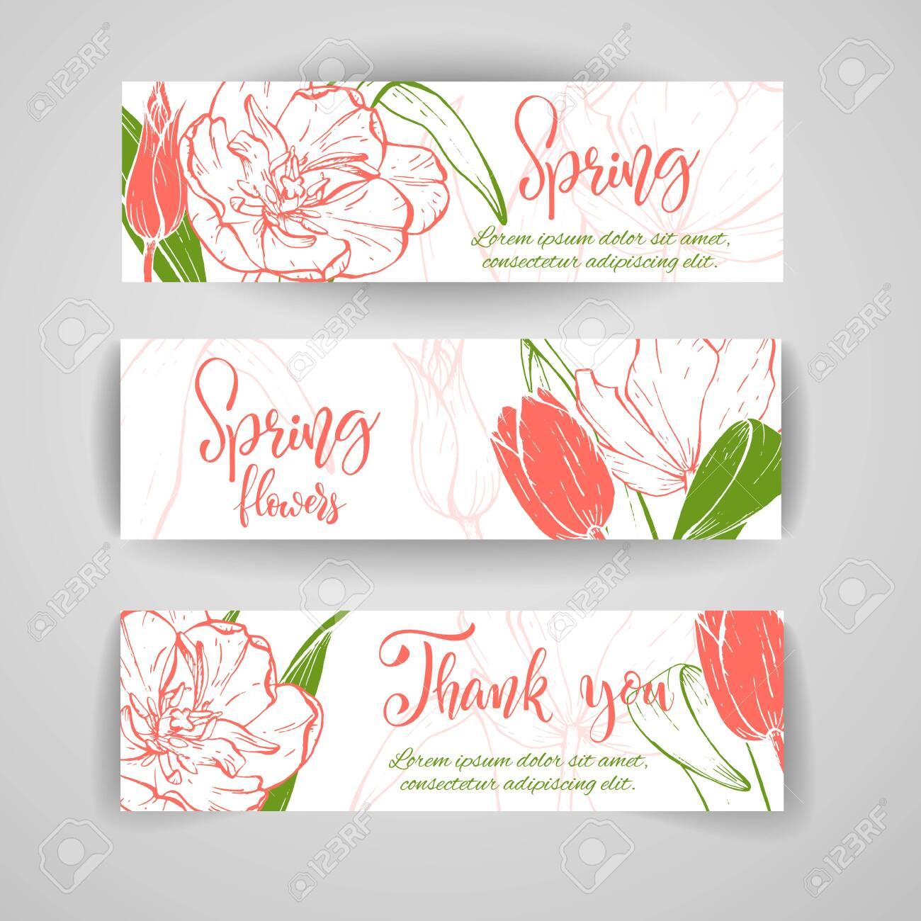 Sketch linear tulip blossom. - 128391036