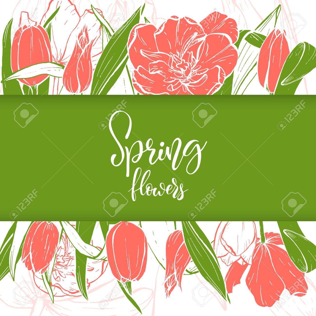 Sketch linear tulips blossom. - 128393949