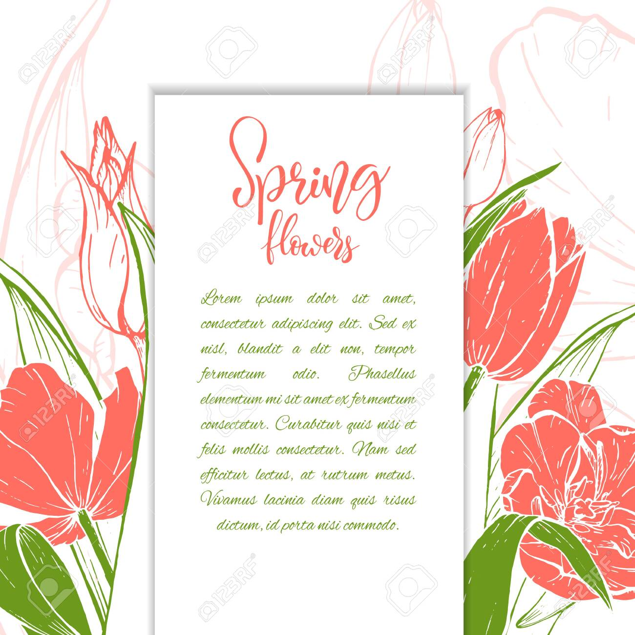 Sketch linear tulips blossom. - 128393947