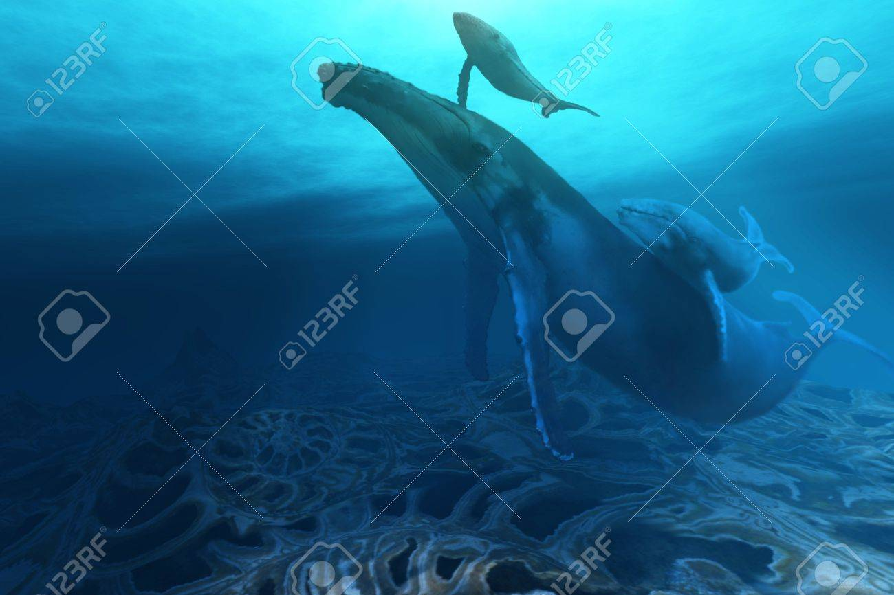 FOSSILS Stock Photo - 4152732