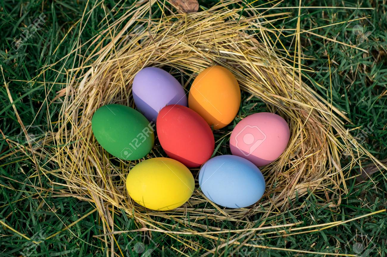 The Colorful Easter Eggs In The Nest With Green Grasses Background