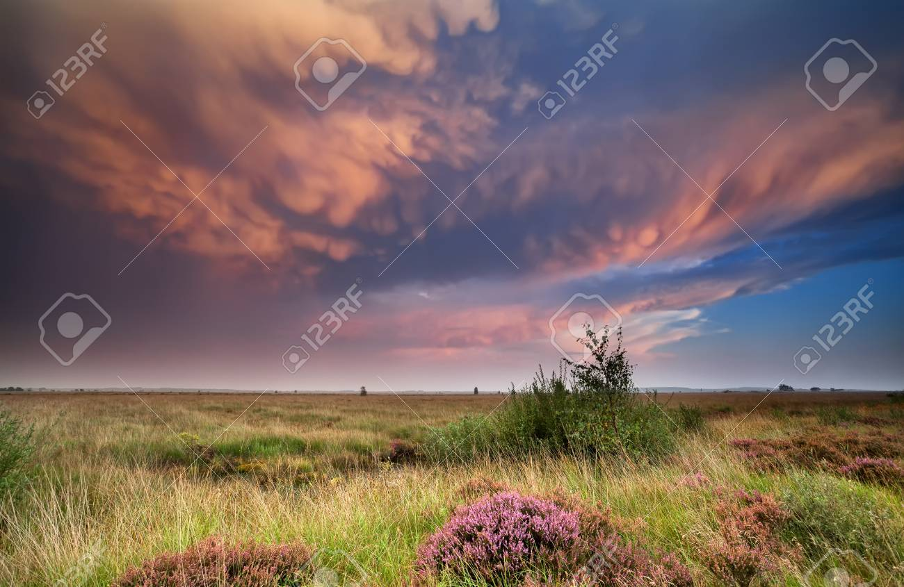 dramatic lenticular clouds over heathland at sunset Stock Photo - 22142571