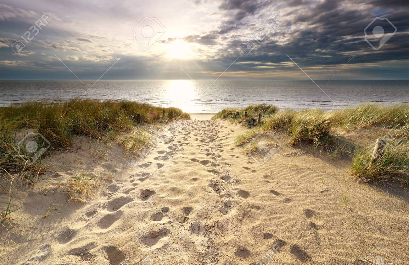 sunshine over sand path to North sea beach in summer - 128995553