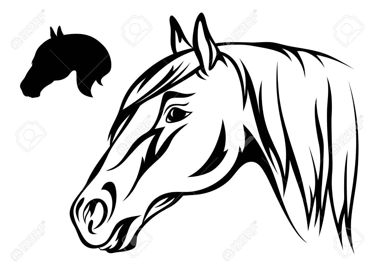 Horse Head Illustration Royalty Free Cliparts Vectors And Stock Illustration Image 10667476