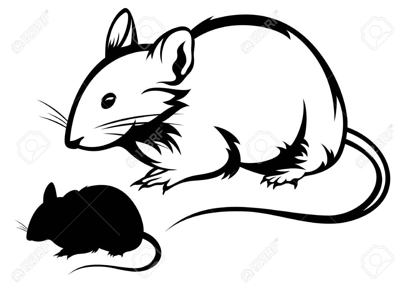 mouse black and white outline and silhouette royalty free cliparts rh 123rf com Bat Clip Art Black and White Man Clip Art Black and White