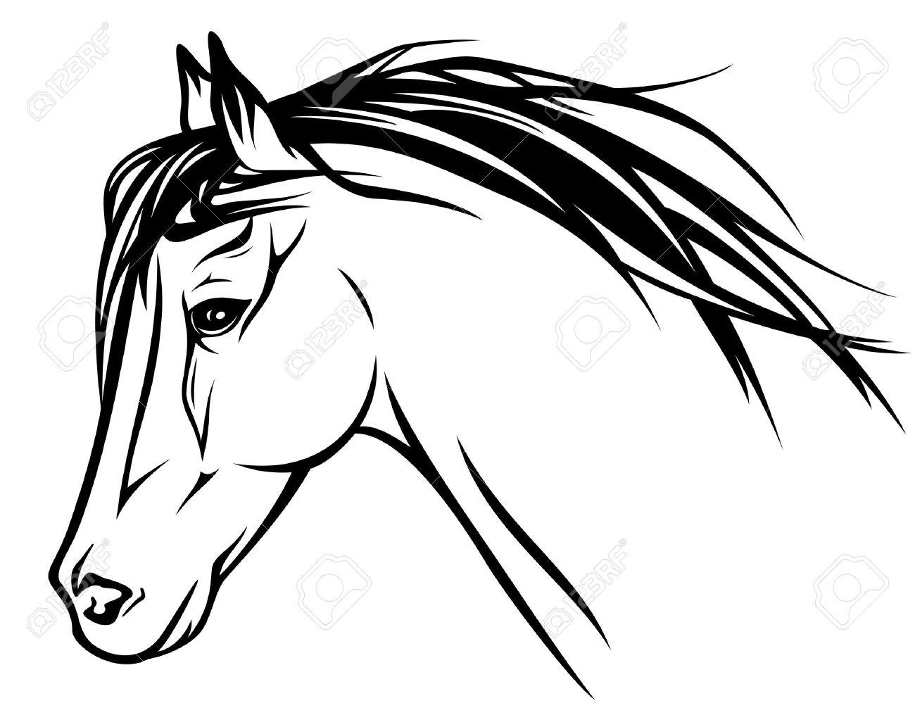 running horse head black and white outline Stock Vector - 16570005