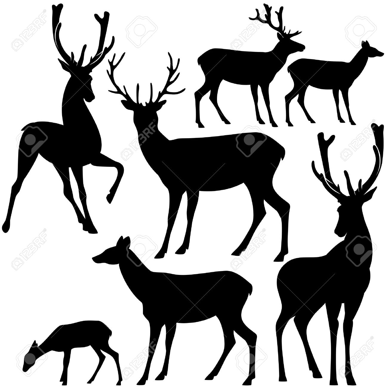 deer black and white silhouette set - vector collection of wild animals detailed outlines - 31380017
