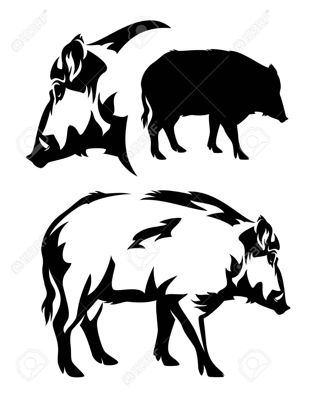 wild boar black and white vector outline and silhouette - 39707911