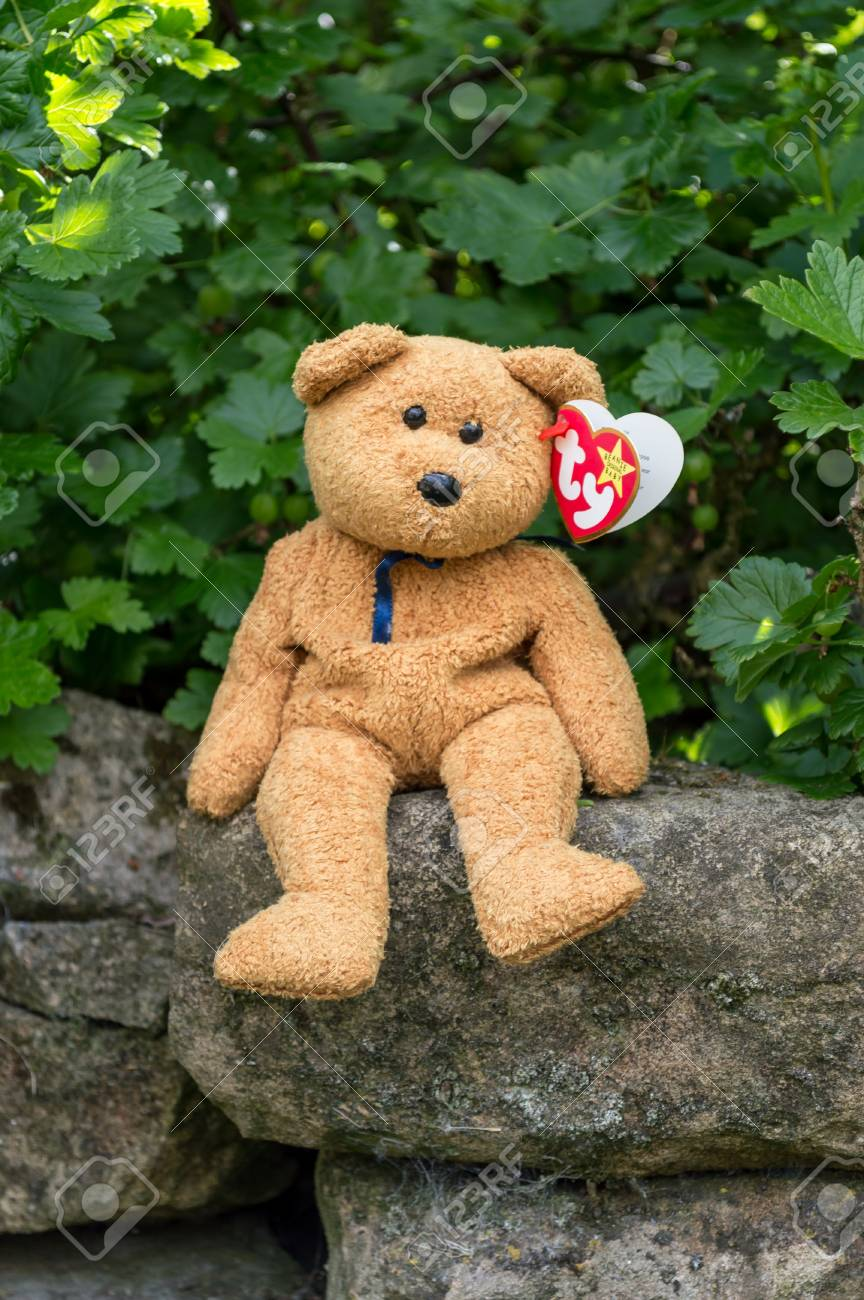Ty Beanie Baby Fuzz the Bear Retired New All tags