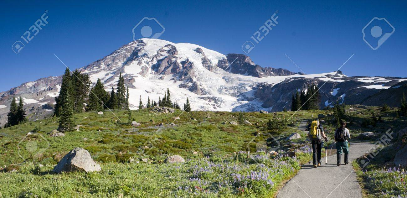 Mt  Rainier and Wildflowers in Bloom Stock Photo - 15606499