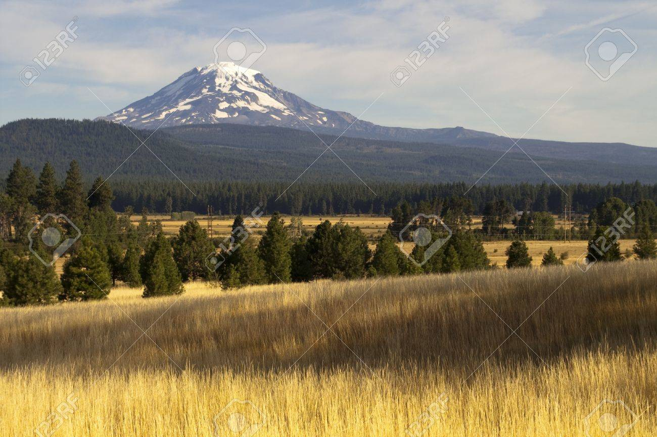 Mt Adams looms over lush ranch land in Washington state