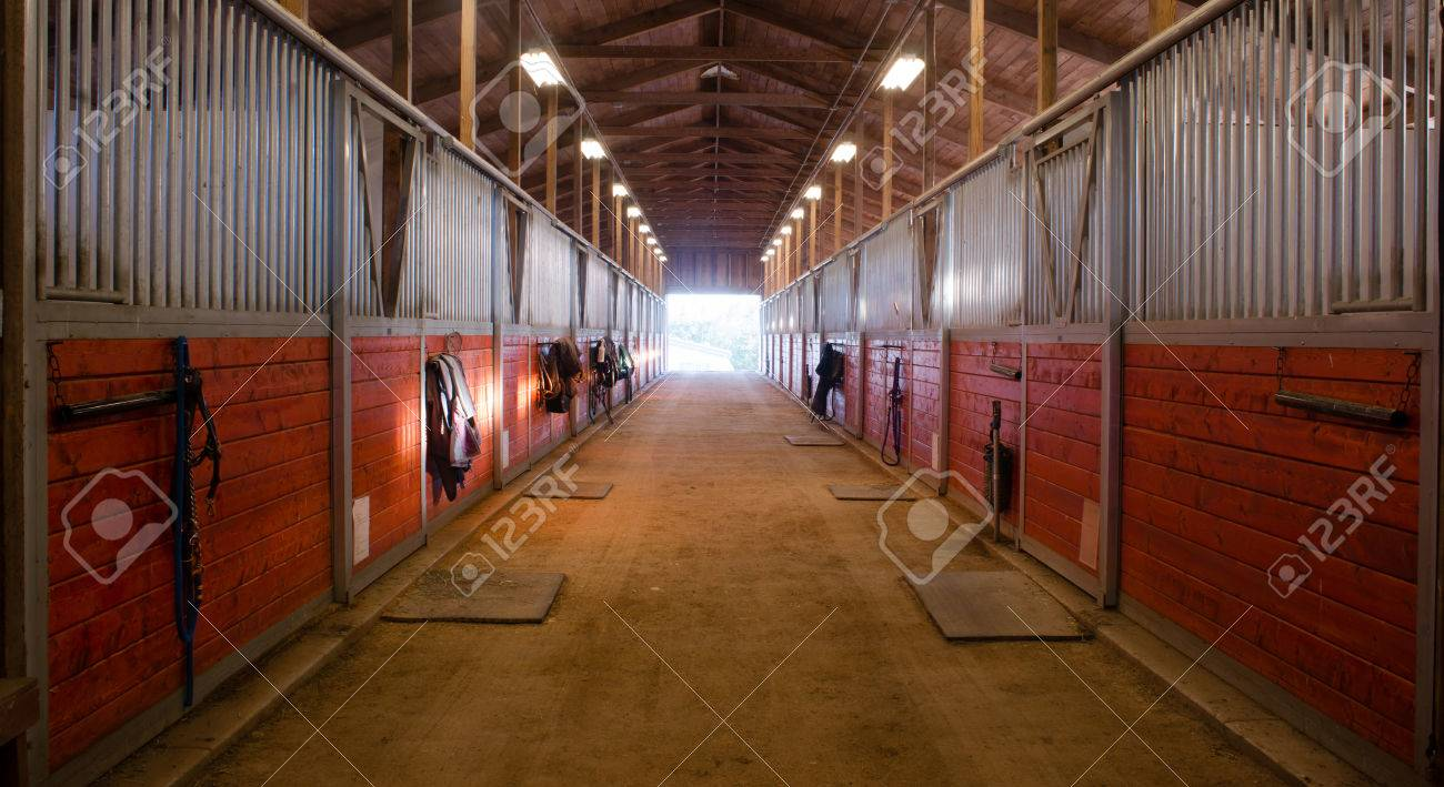 The Door Shows Outside From The Horse Stalls Equestrain Stable Stock Photo Picture And Royalty Free Image Image 31381226