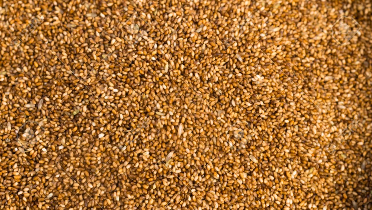 Farrow Grains Wheat Whole Food Stock Photo Picture And Royalty Free