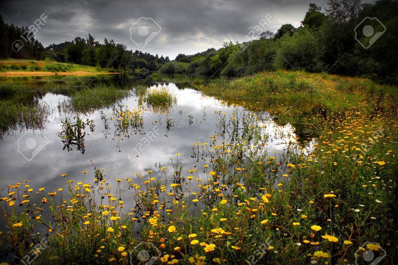 paisaje del lago de flores y cielo nublado en el alentejo portugal foto de archivo