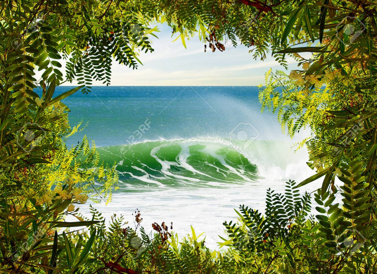 Idyllic Landscape Of A Perfect Surfing Wave Framed With Green ...