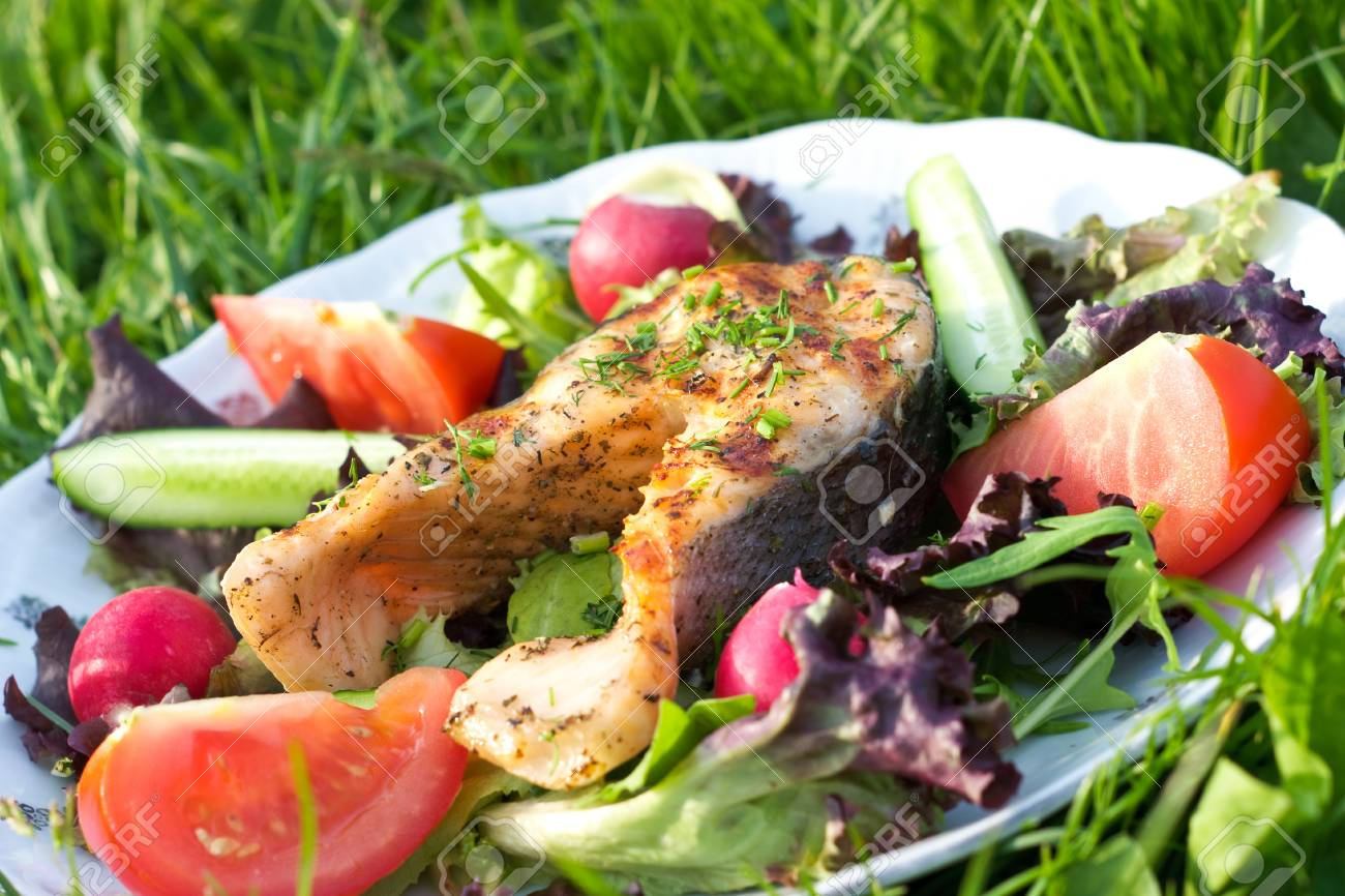 Salmon served on grass surface Stock Photo - 9731700