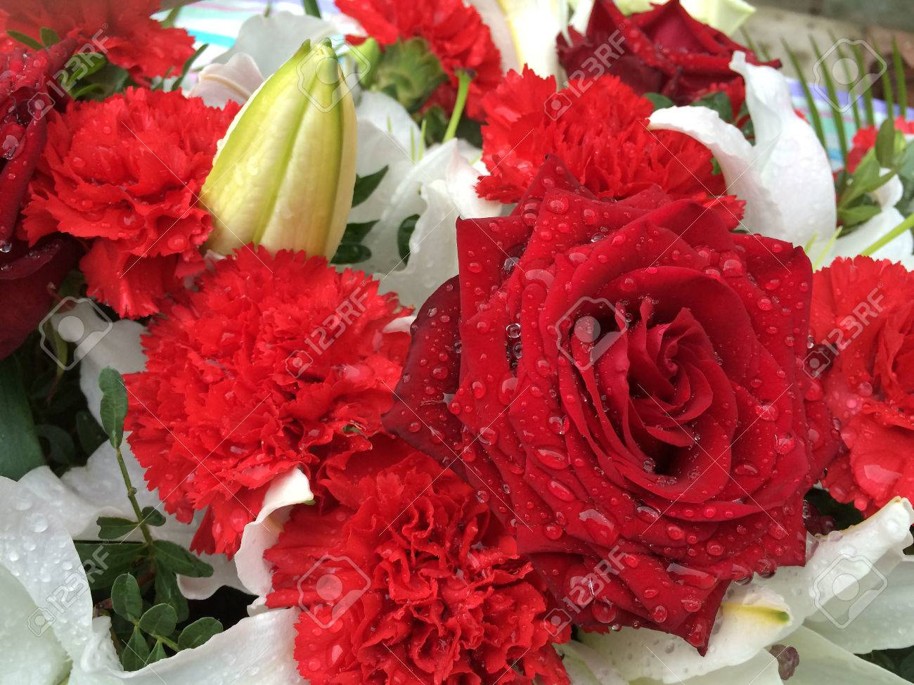 close up of beautiful pretty red roses and carnations on a bed, Beautiful flower